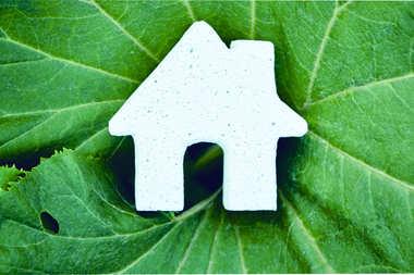 Dom z naturalnych materiałów - z czego powstają silikaty i beton komórkowy?