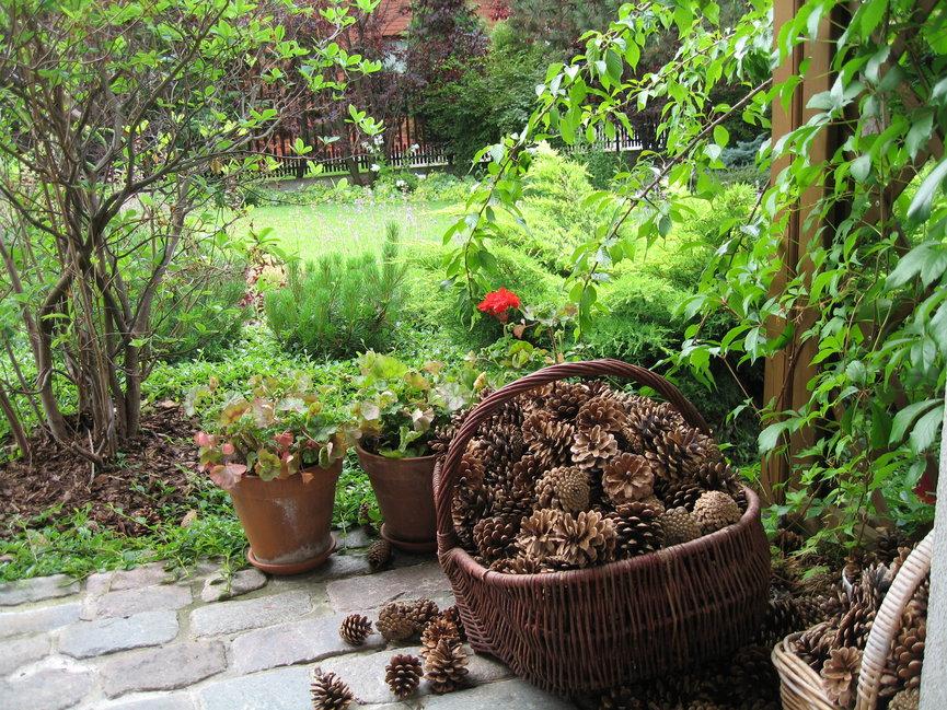 fot. Gardenarium
