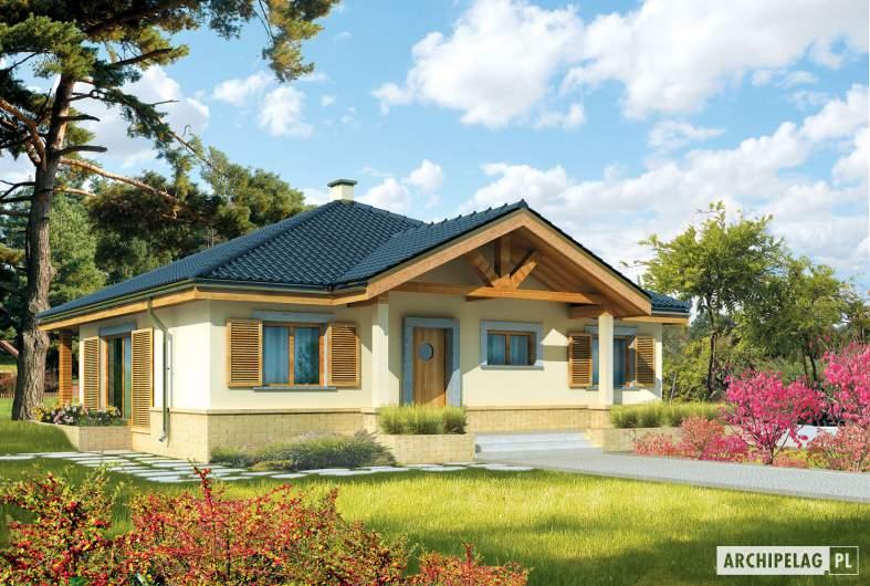 Projekt domu Harold - Projekty domów ARCHIPELAG - Harold - wizualizacja frontowa