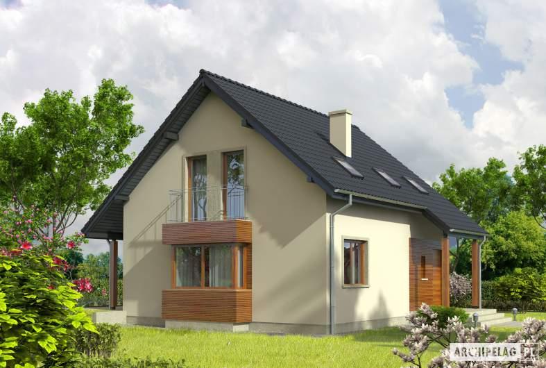 Projekt domu Robin - Projekty domów ARCHIPELAG - Robin - wizualizacja frontowa