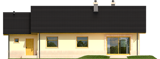 Erin III G1 - Projekty domów ARCHIPELAG - Erin III G1 - elewacja tylna