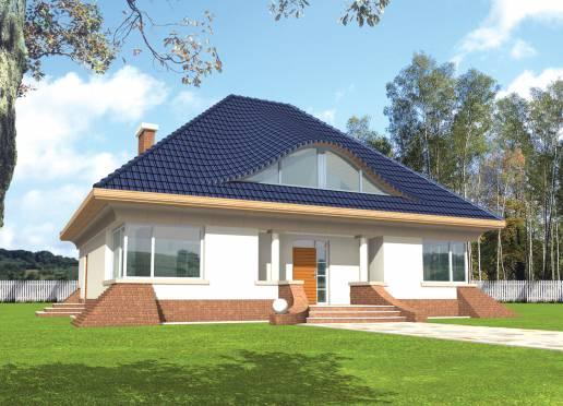 Mājas projekts - Wiga I