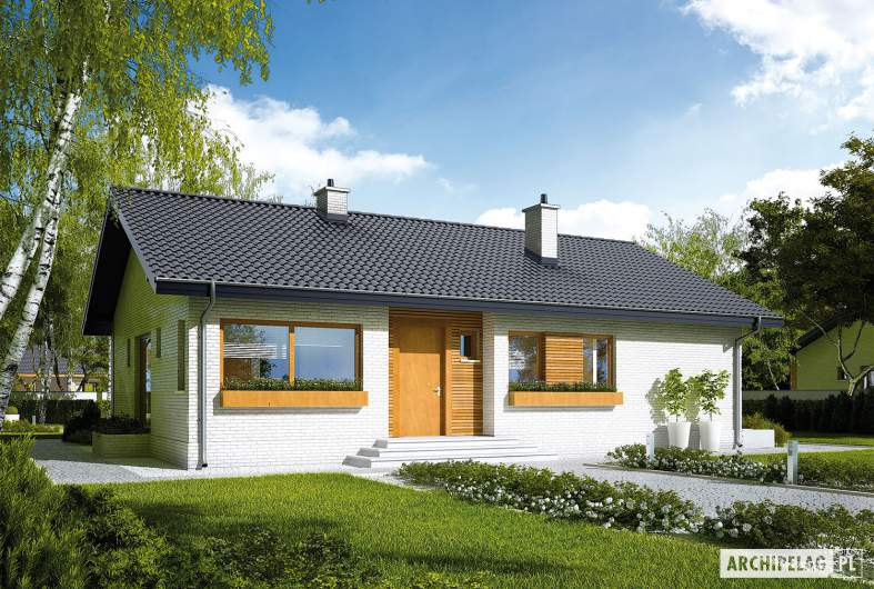 Projekt domu Eryk III - wizualizacja frontowa