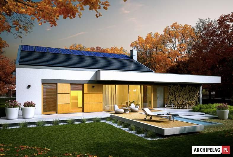 Projekt domu EX 11 G2 (wersja C) - wizualizacja ogrodowa