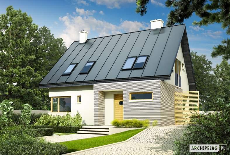 Projekt domu Tim - Projekty domów ARCHIPELAG - Tim - wizualizacja frontowa