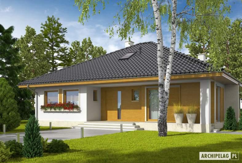Projekt domu Flori III (30 stopni) - wizualizacja frontowa