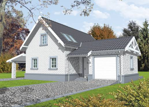 Mājas projekts - Flora