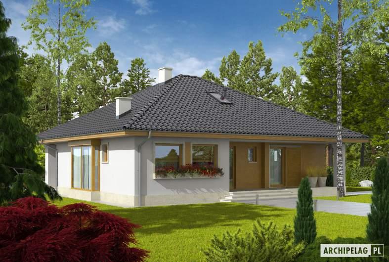 Projekt domu Flori III ECONOMIC (wersja A) 30 stopni - wizualizacja frontowa