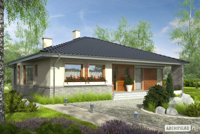 Projekt domu Flori II (30 stopni) - Projekty domów ARCHIPELAG - Flori II (30 stopni) - wizualizacja frontowa