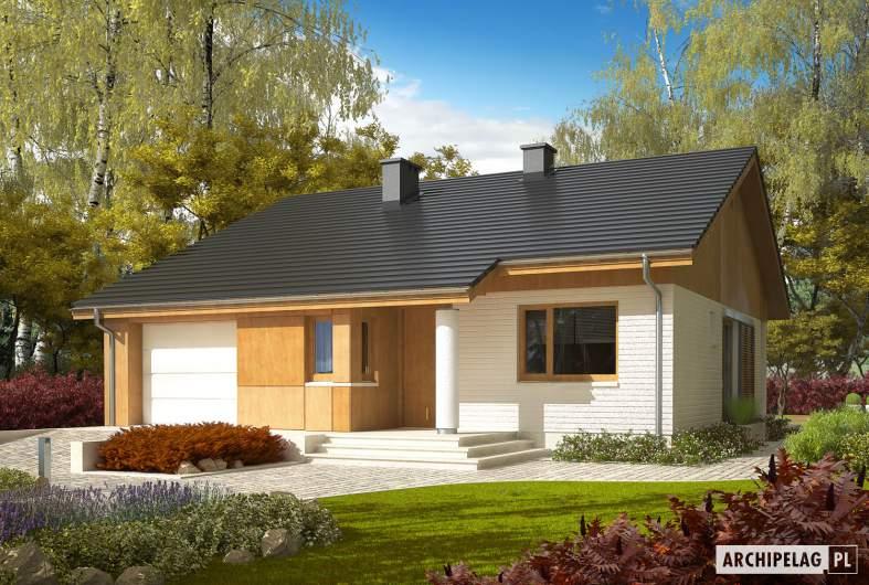 Projekt domu Rafael G1 (30 stopni) - wizualizacja frontowa
