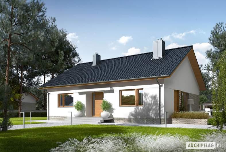 Projekt domu Swen II - Projekty domów ARCHIPELAG - Swen II - wizualizacja frontowa