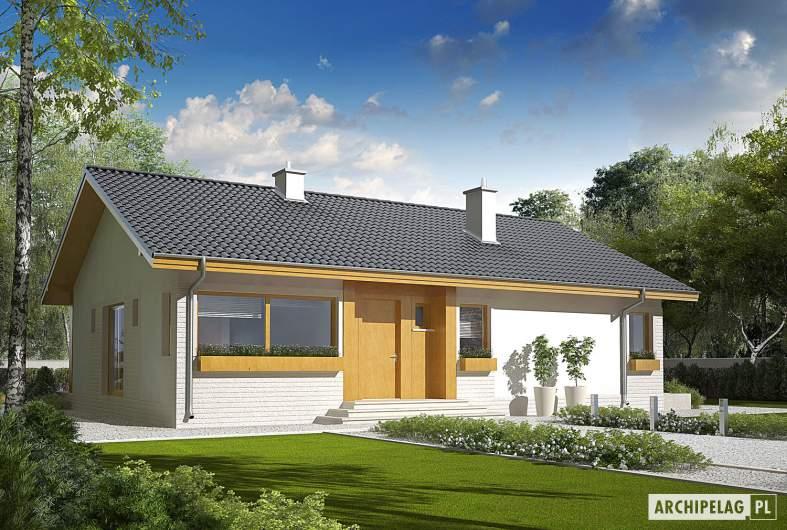 Projekt domu Eryk (30 stopni) - wizualizacja frontowa