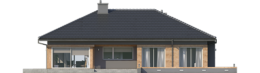 Dominic G2 A - Projekty domów ARCHIPELAG - Dominik G2 (wersja A) - elewacja tylna