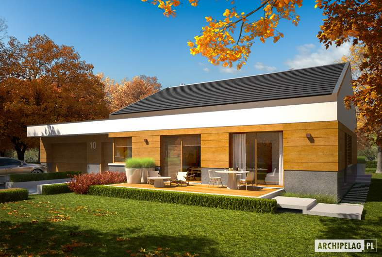 Projekt domu EX 11 G2 (wersja D) MULTI-COMFORT - Projekty domów ARCHIPELAG - EX 11 G2 (wersja D) MULTI-COMFORT - wizualizacja frontowa