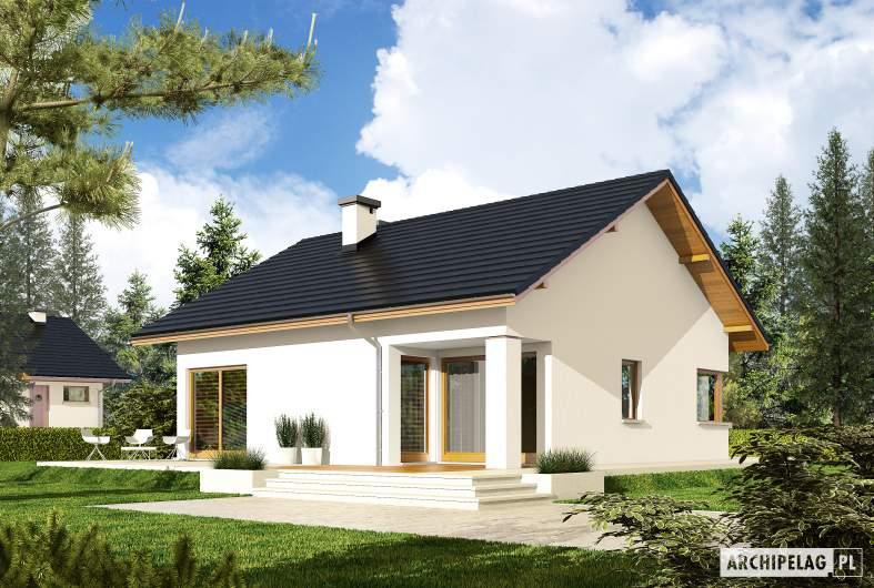 Projekt domu Tori III ECONOMIC (wersja A) - wizualizacja ogrodowa