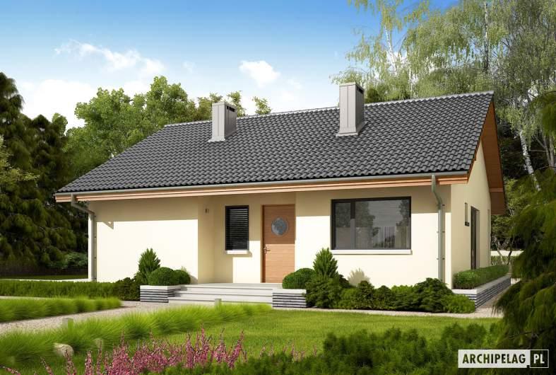 Projekt domu Rafael VI ECONOMIC (30 stopni) - wizualizacja frontowa