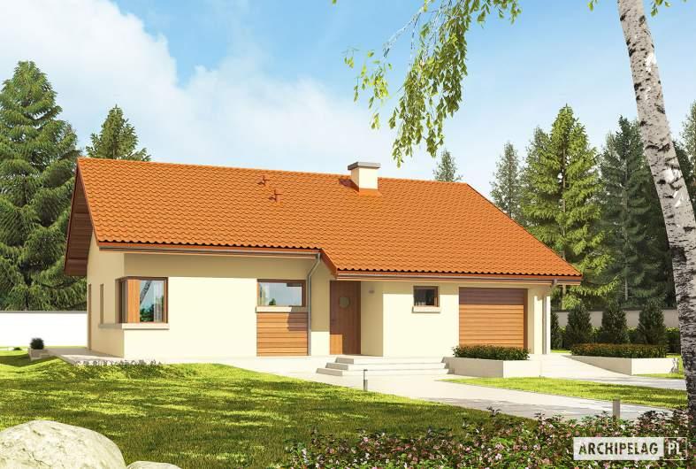 Projekt domu Tori III G1 ECONOMIC (wersja B) - Projekty domów ARCHIPELAG - Tori III G1 ECONOMIC (wersja B) - wizualizacja frontowa
