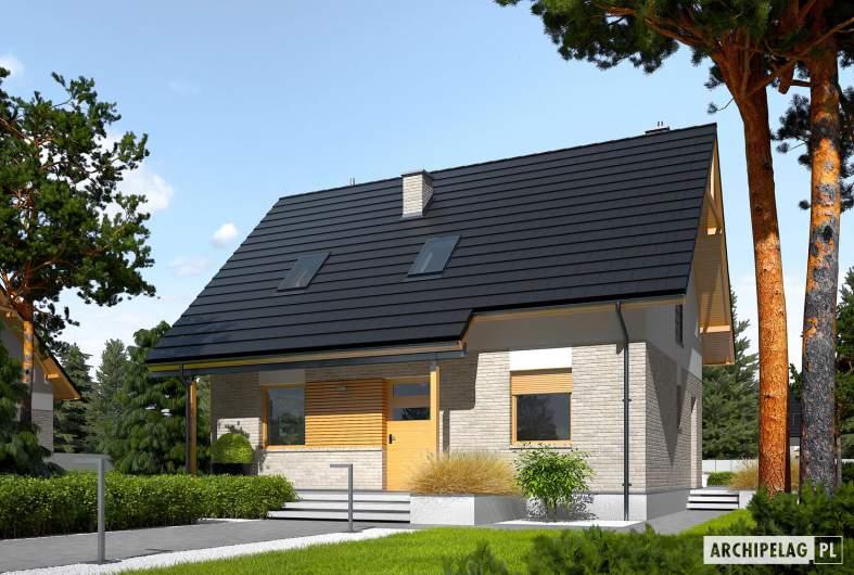 Projekt domu Oli - Projekty domów ARCHIPELAG - Oli - wizualizacja frontowa