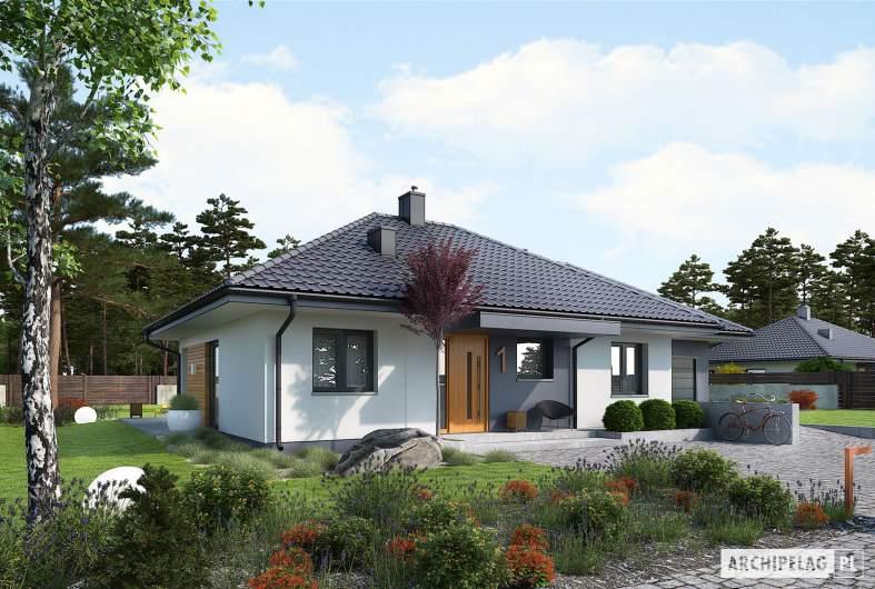 Projekt domu Mini 1 G1 - wizualizacja frontowa