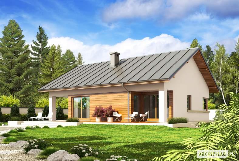 Projekt domu Tori III G1 ECONOMIC (wersja A) - wizualizacja ogrodowa