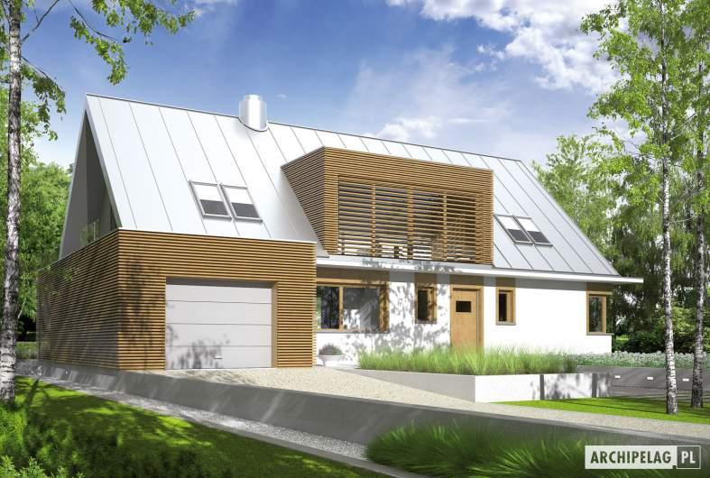 Projekt domu EX 3 G1 - wizualizacja frontowa