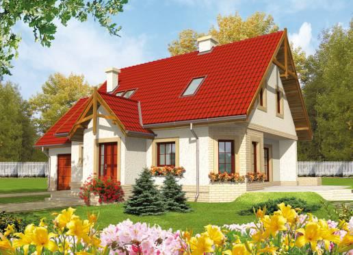 Mājas projekts - Igusia