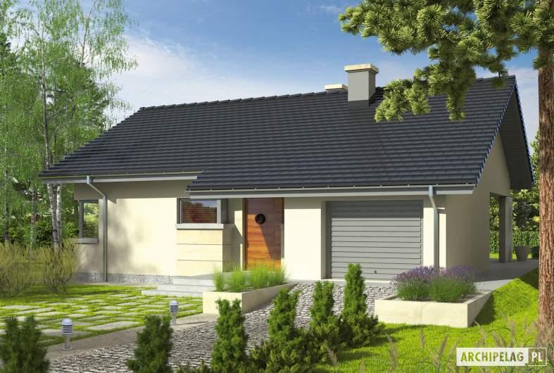 Projekt domu Tori G1 - Projekty domów ARCHIPELAG - Tori G1 - wizualizacja frontowa